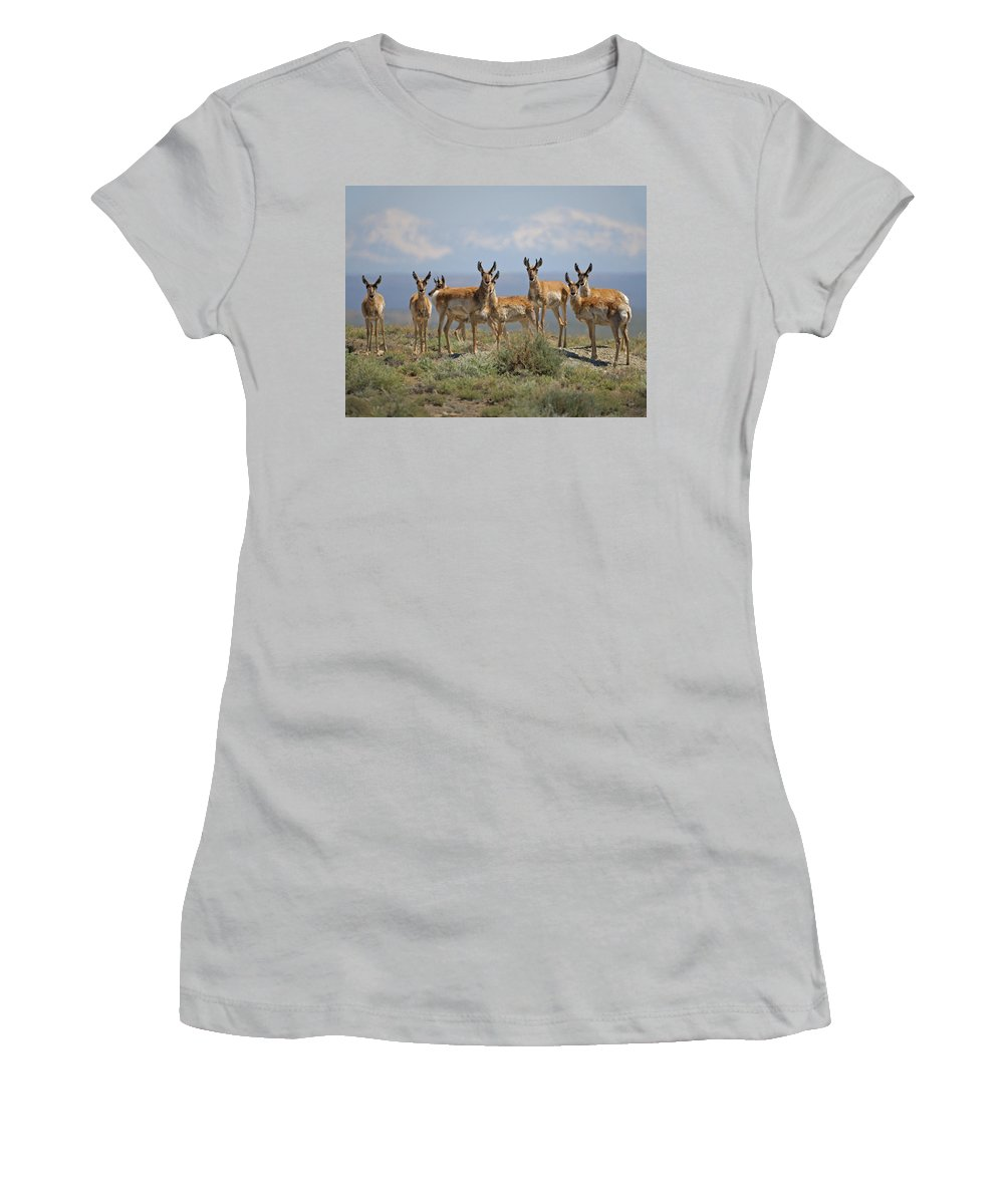 Antelope Women's T-Shirt (Athletic Fit) featuring the photograph Antelope by Heather Coen