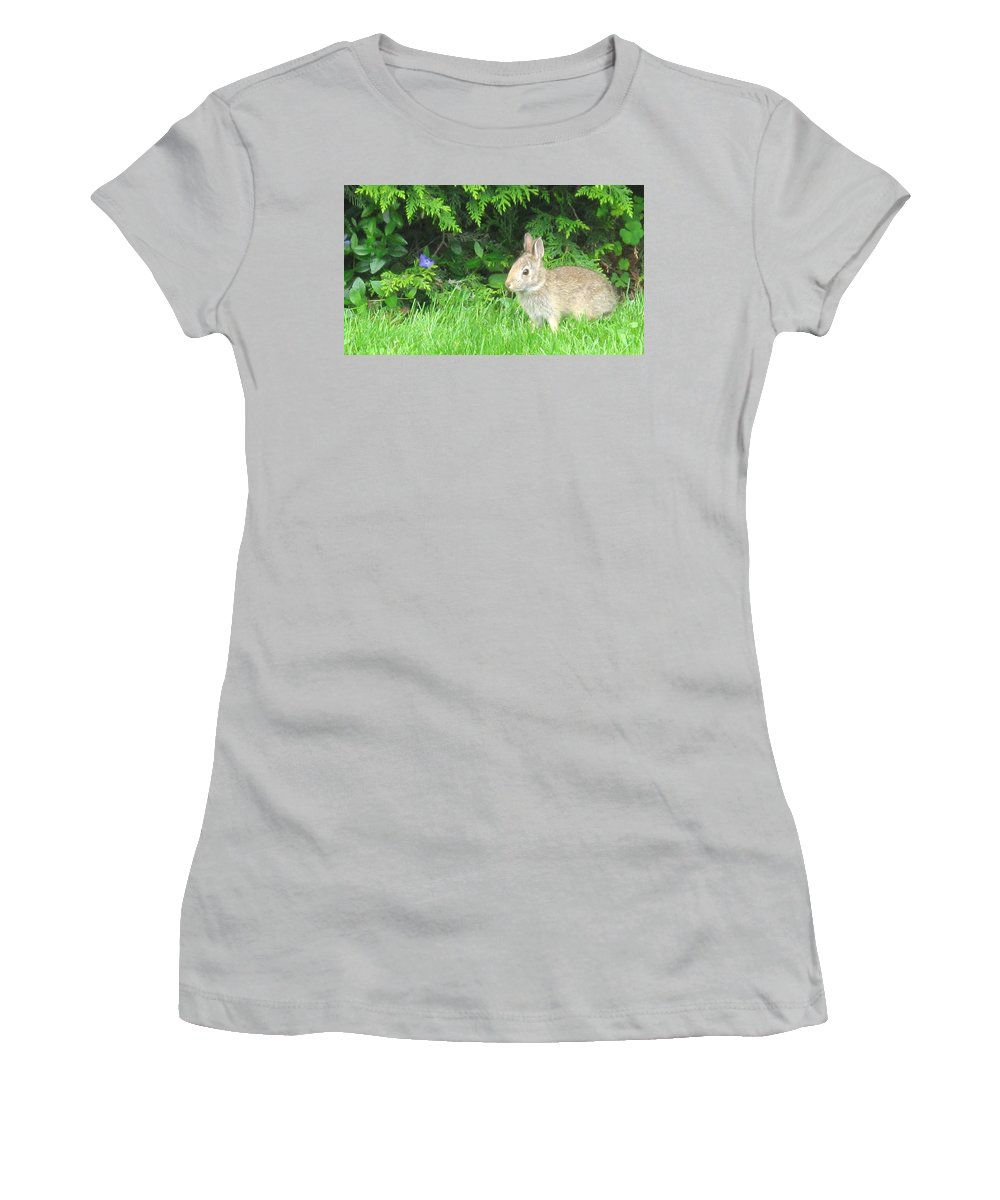 Rabbit Women's T-Shirt (Athletic Fit) featuring the photograph Bunny In Repose by Ian MacDonald