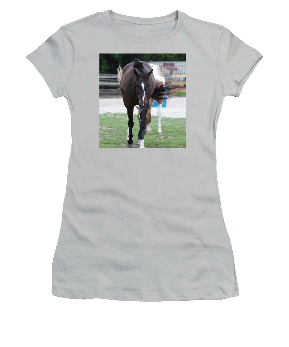 Horses Women's T-Shirt (Athletic Fit) featuring the photograph Flying Circus by Rob Hans