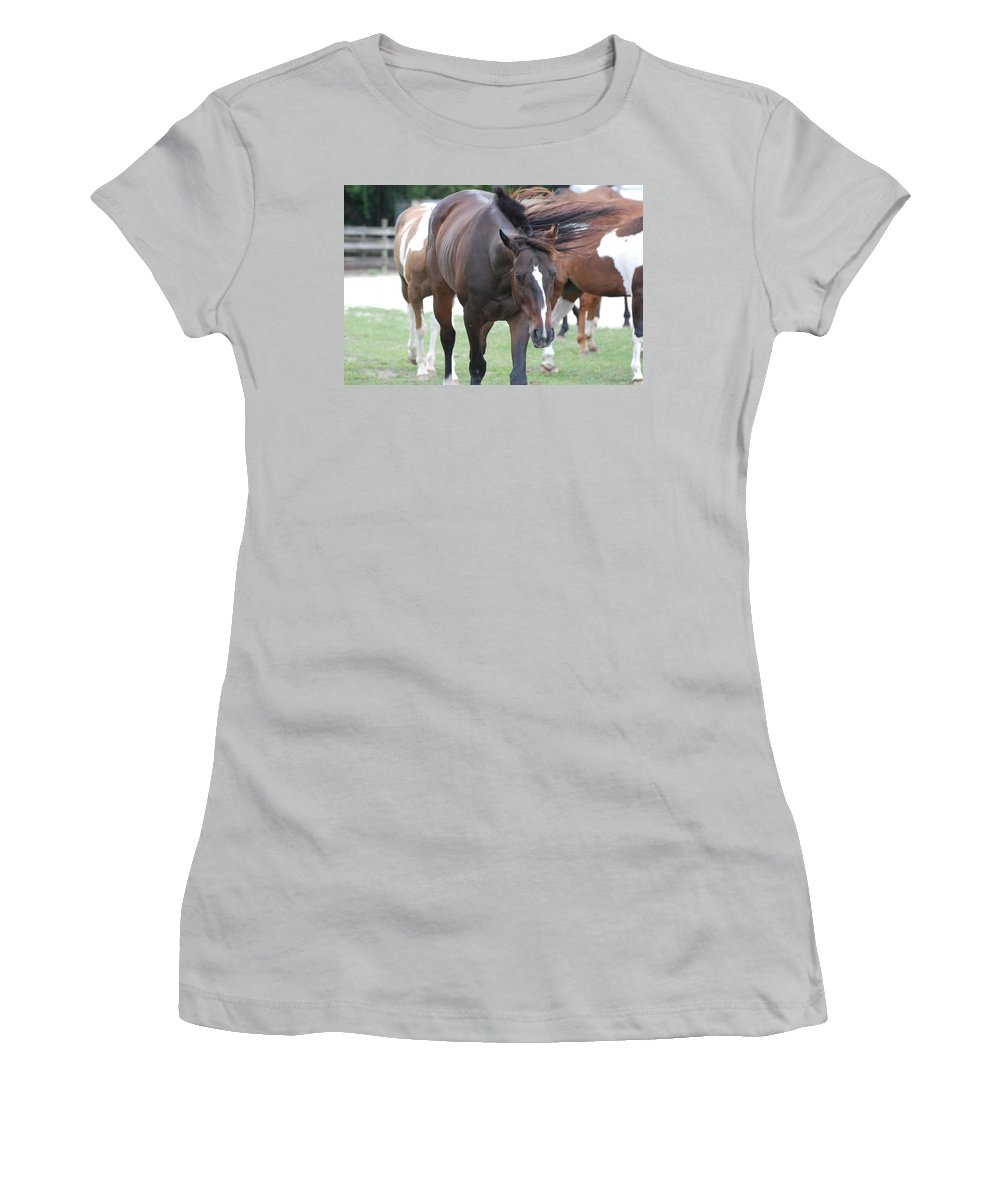 Horses Women's T-Shirt (Athletic Fit) featuring the photograph Horses by Rob Hans