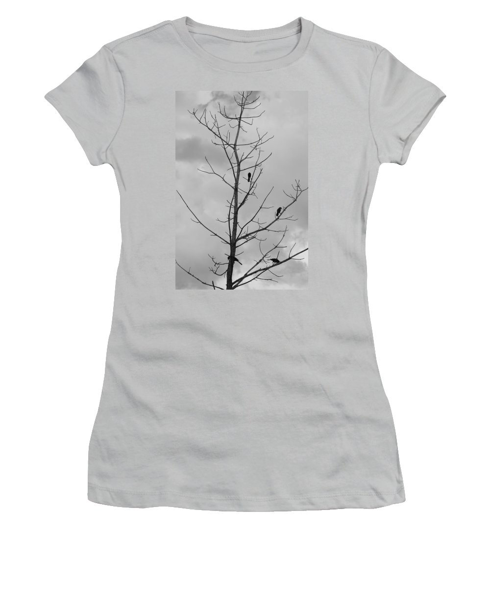 Tree Women's T-Shirt (Athletic Fit) featuring the photograph The Birds by Rob Hans