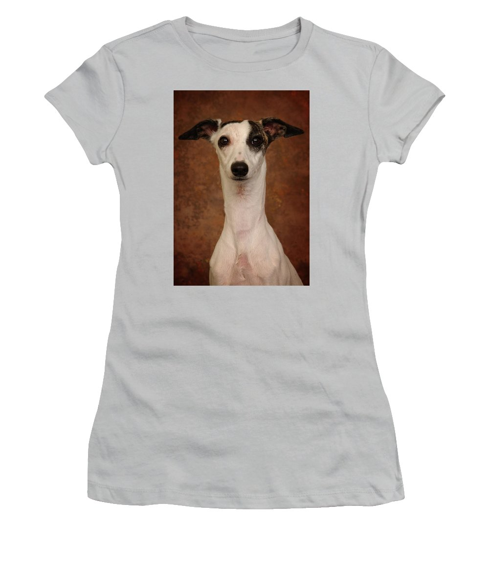Whippet Women's T-Shirt (Athletic Fit) featuring the photograph Young Whippet by Greg Mimbs