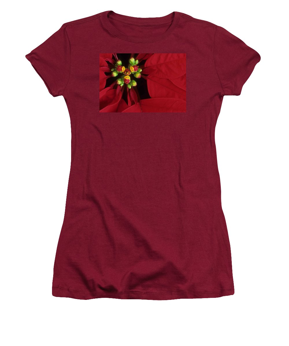 Poinsettia Women's T-Shirt (Athletic Fit) featuring the photograph Poinsettia by Laurie Paci