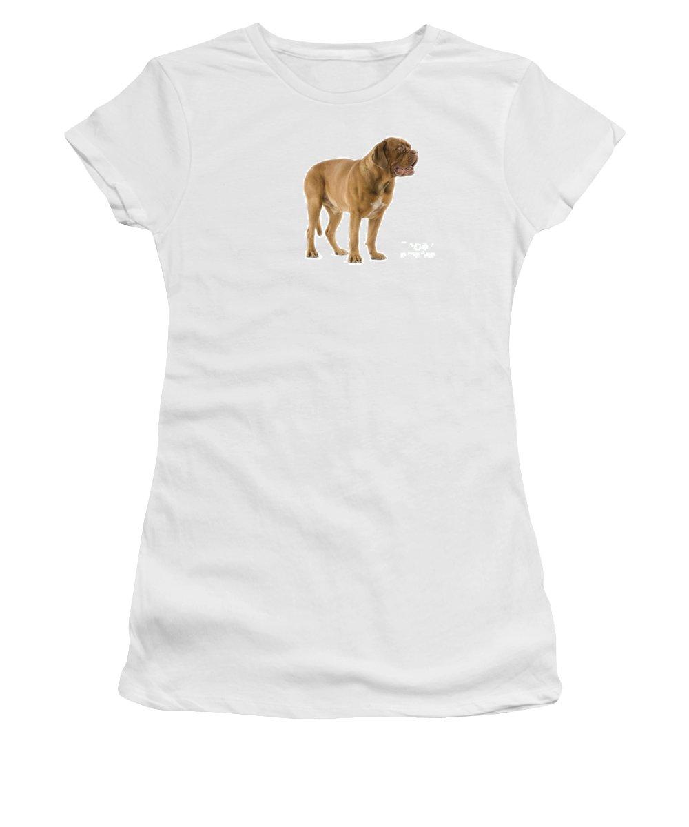 Dogue De Bordeaux Women's T-Shirt (Athletic Fit) featuring the photograph Dogue De Bordeaux by Jean-Michel Labat