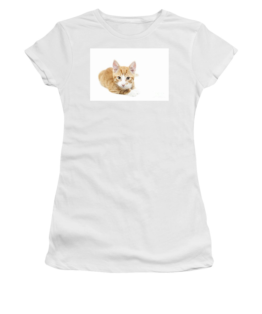 Kitten Women's T-Shirt (Athletic Fit) featuring the photograph Ginger Kitten Staring by Sophie McAulay