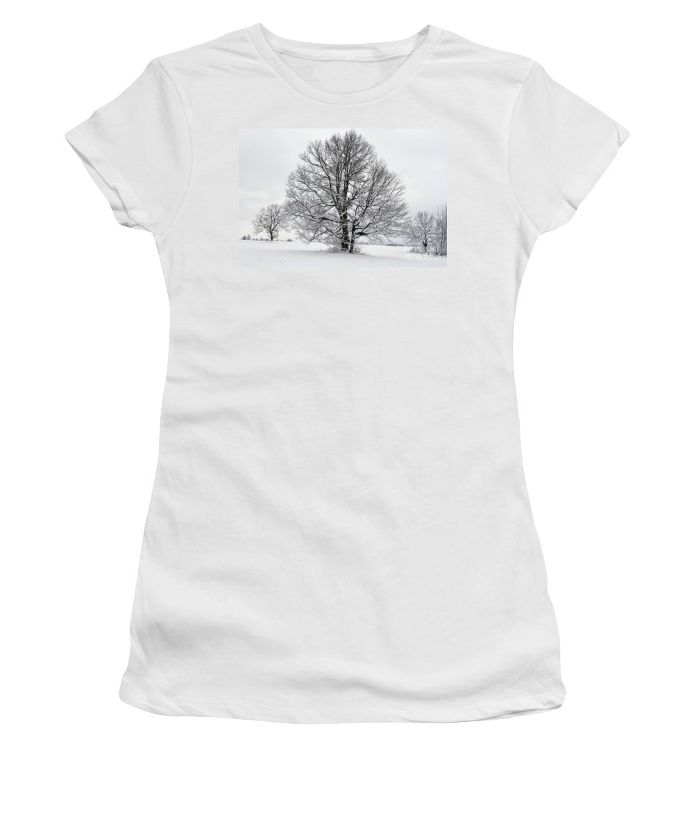 Day Women's T-Shirt (Athletic Fit) featuring the photograph Trees In Winter by Michal Boubin