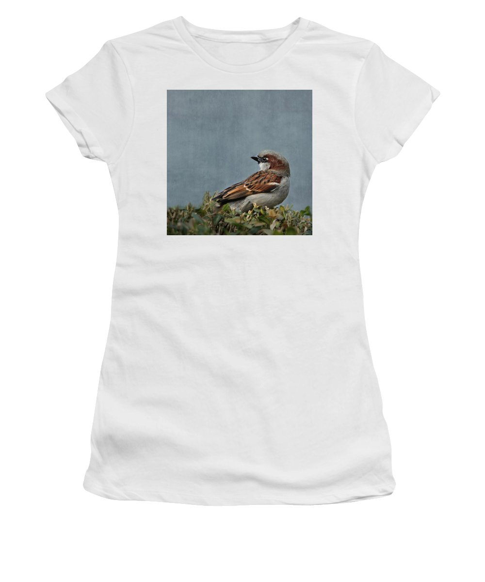 Nature Women's T-Shirt (Athletic Fit) featuring the mixed media Sparrow by Heike Hultsch