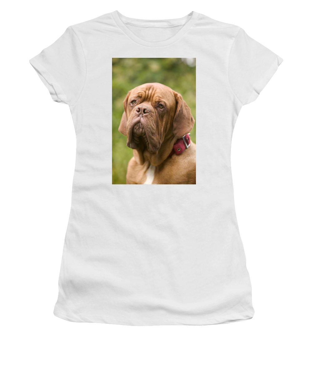 Dogue De Bordeaux Women's T-Shirt (Athletic Fit) featuring the photograph Dogue De Bordeaux by Jean-Michel Labat