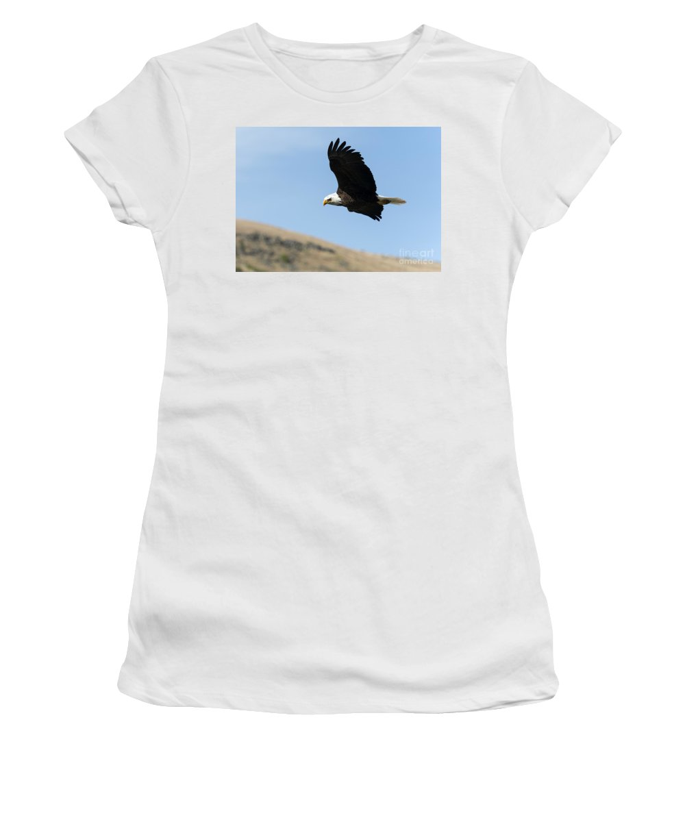 Bald Eagle Women's T-Shirt (Athletic Fit) featuring the photograph Looking Down On The World by Mike Dawson