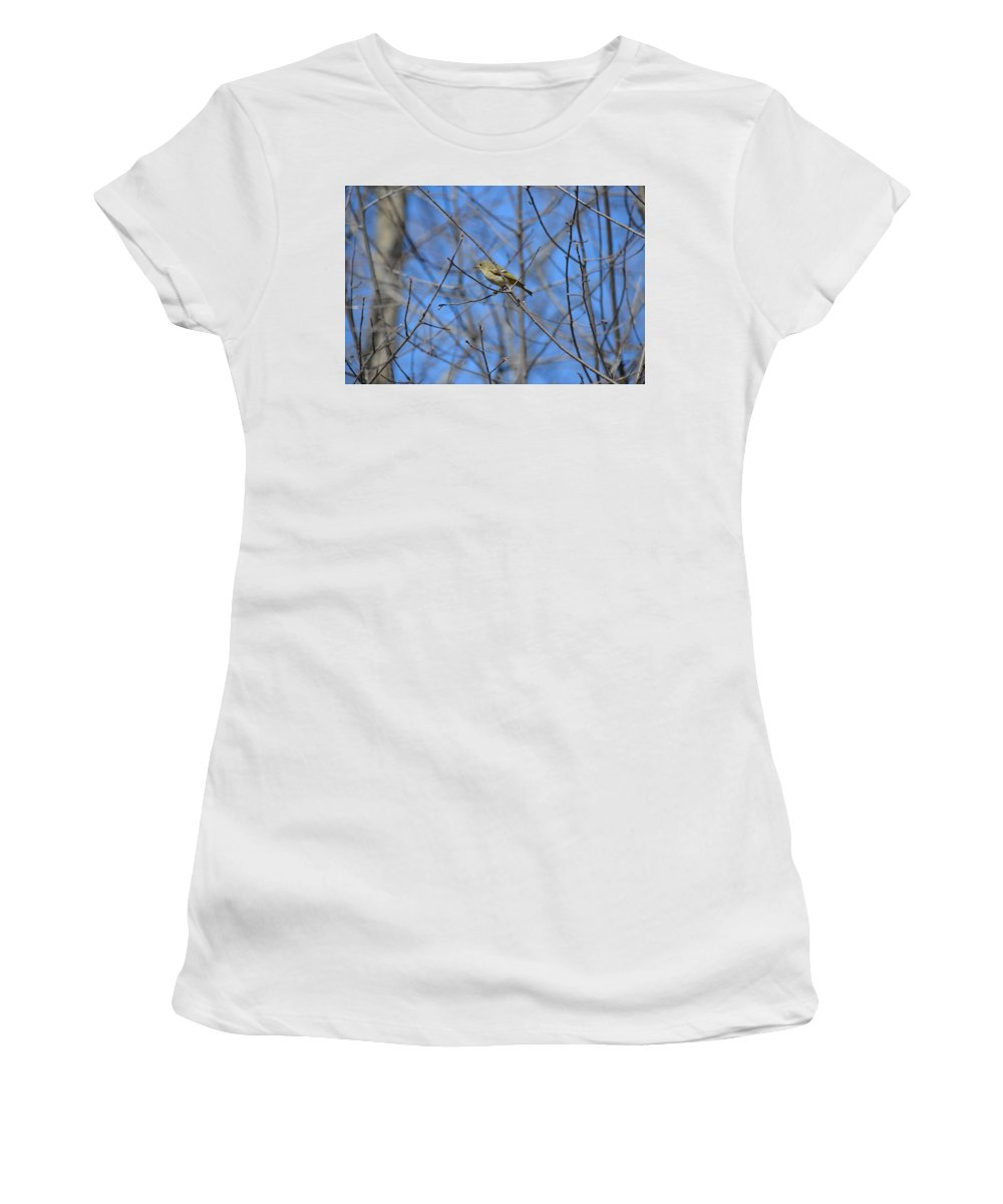 Birds Women's T-Shirt (Athletic Fit) featuring the photograph Ruby-crowned Kinglet by James Petersen