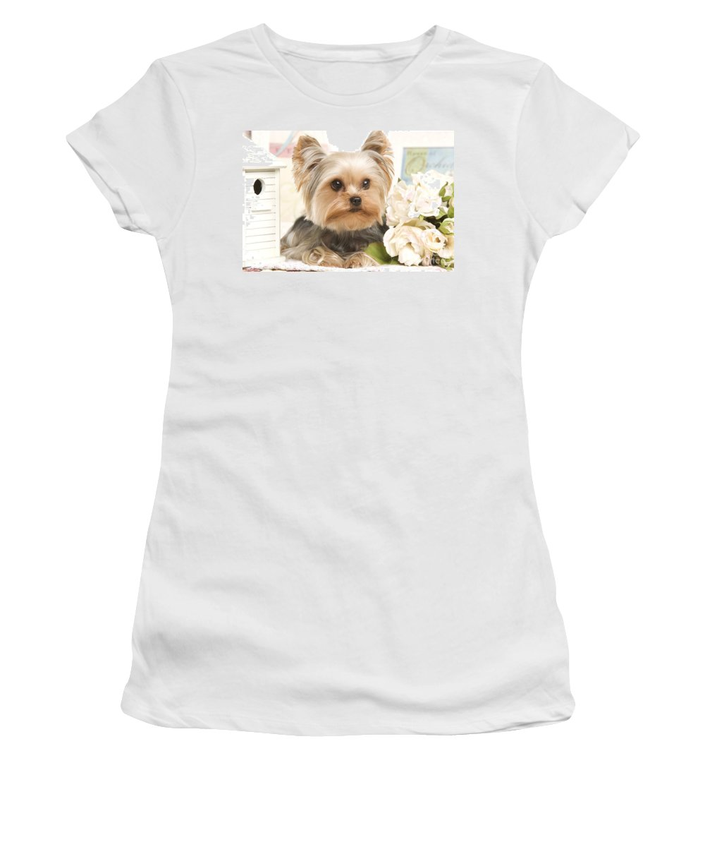 Yorkshire Terrier Women's T-Shirt (Athletic Fit) featuring the photograph Yorkshire Terrier Dog by Jean-Michel Labat