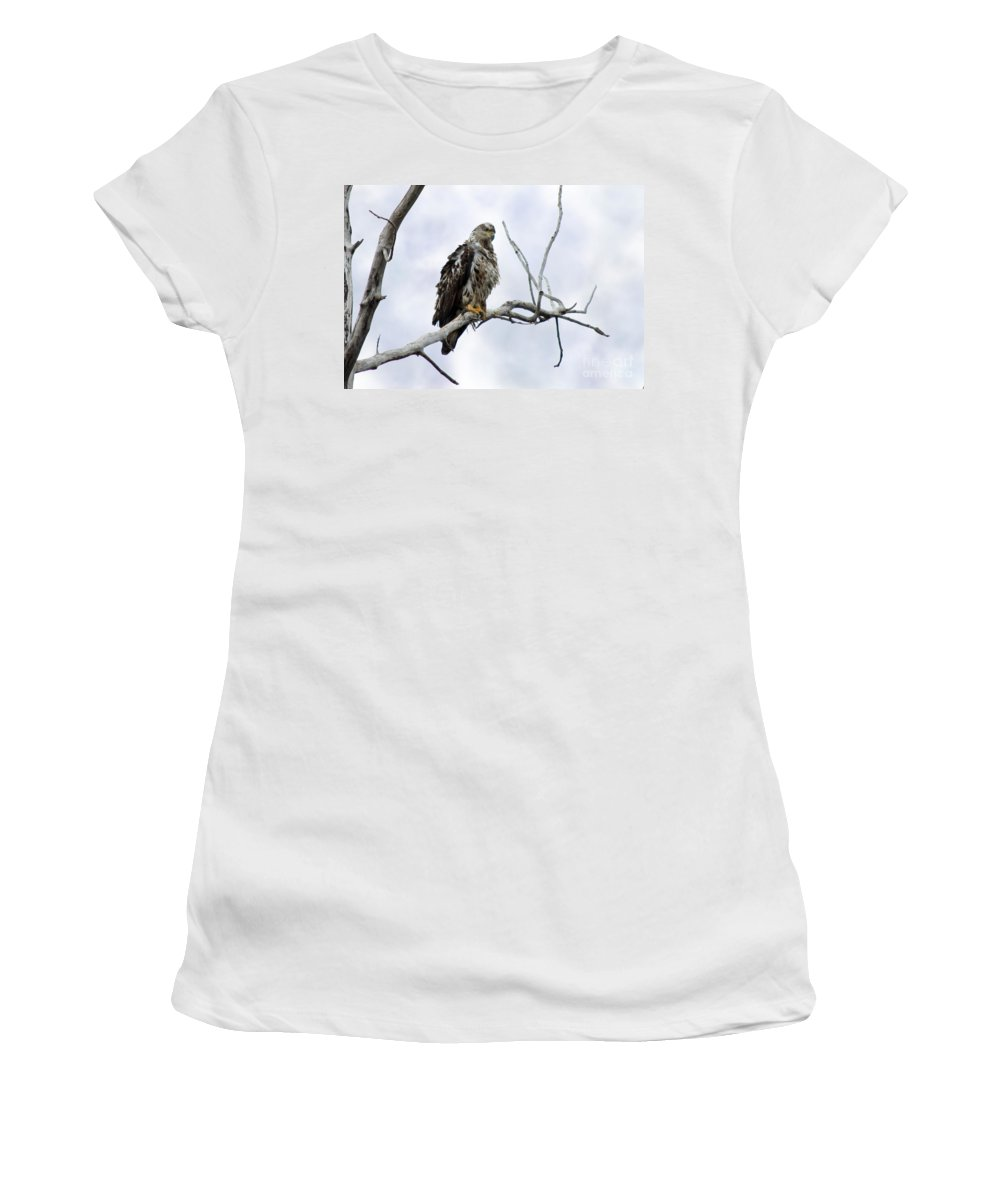 Eagle Women's T-Shirt featuring the photograph Bald Eagle by Lori Tordsen