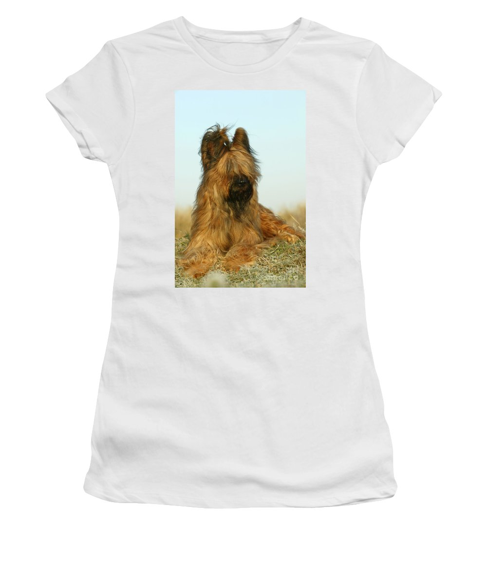 Briard Women's T-Shirt (Athletic Fit) featuring the photograph Briard Dog by Jean-Michel Labat