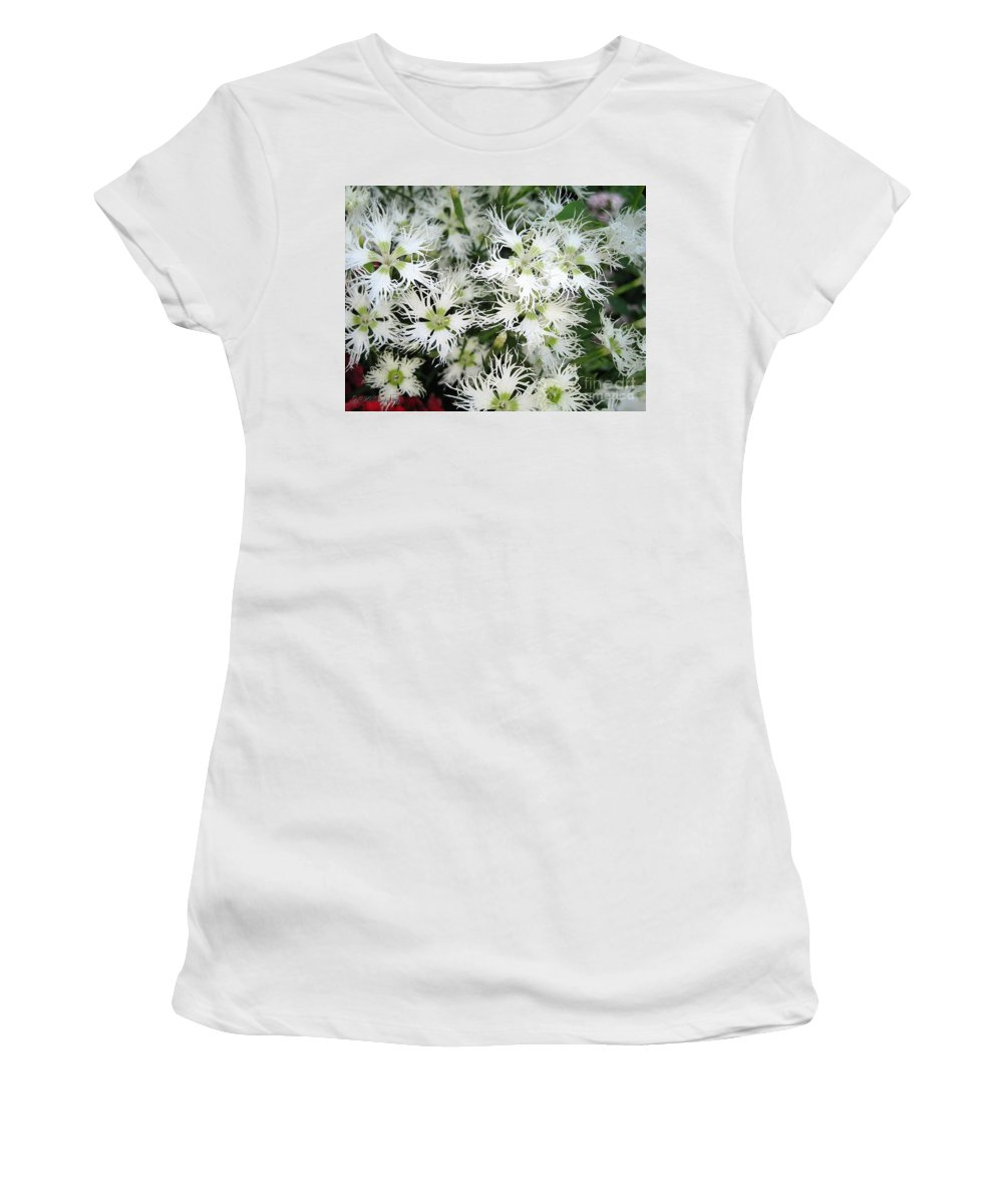 Dianthus Superbus Women's T-Shirt featuring the painting Dianthus Superbus - White by J McCombie