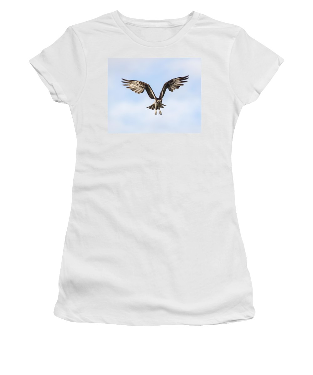 Doug Lloyd Women's T-Shirt (Athletic Fit) featuring the photograph Intense by Doug Lloyd