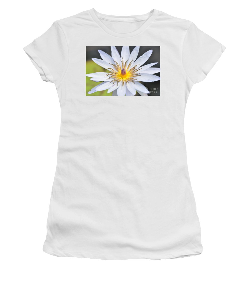 Water Lillies Women's T-Shirt (Athletic Fit) featuring the photograph Water Lily 6 by Allen Beatty