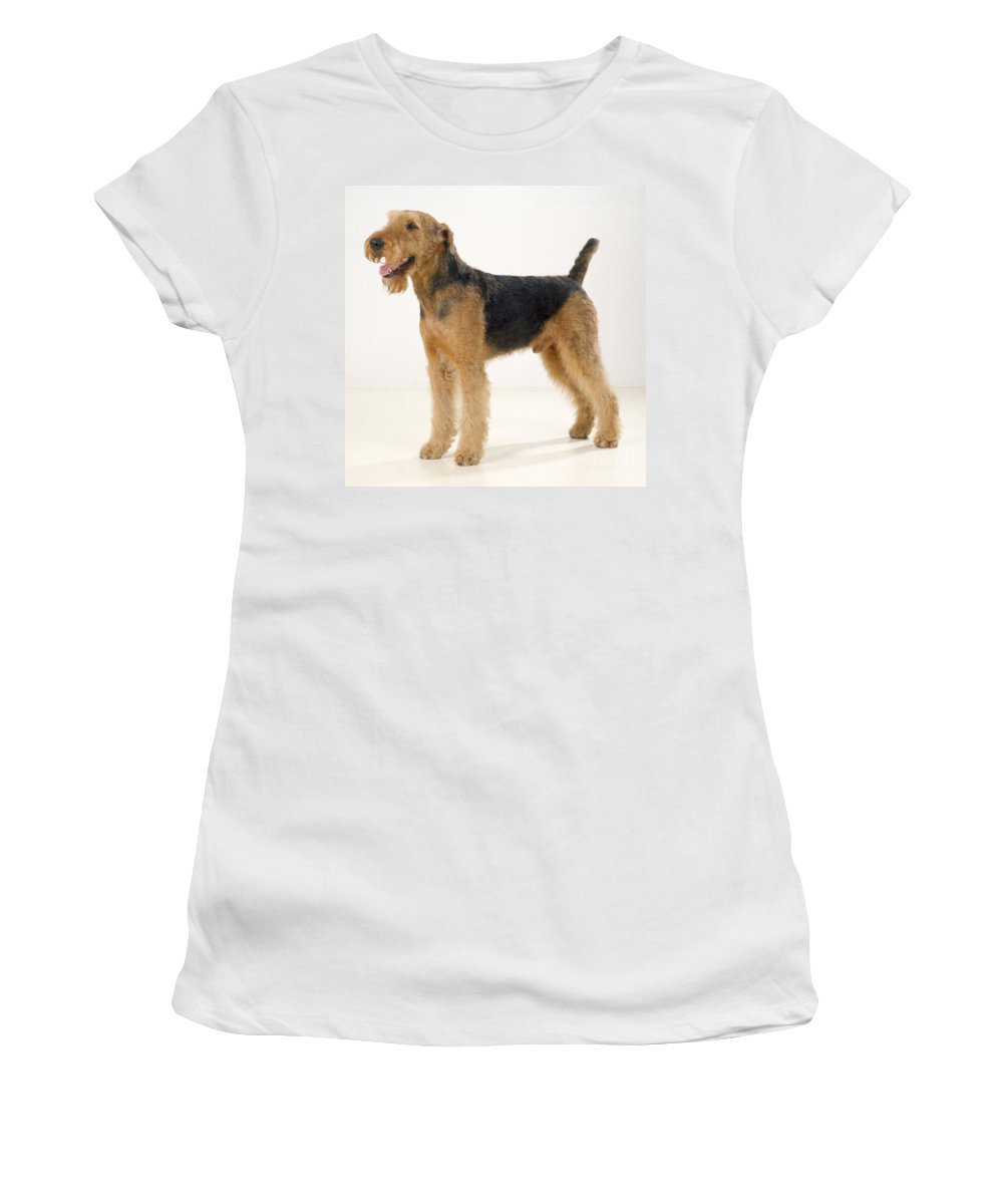 Airedale Terrier Women's T-Shirt (Athletic Fit) featuring the photograph Airedale Terrier Dog by John Daniels