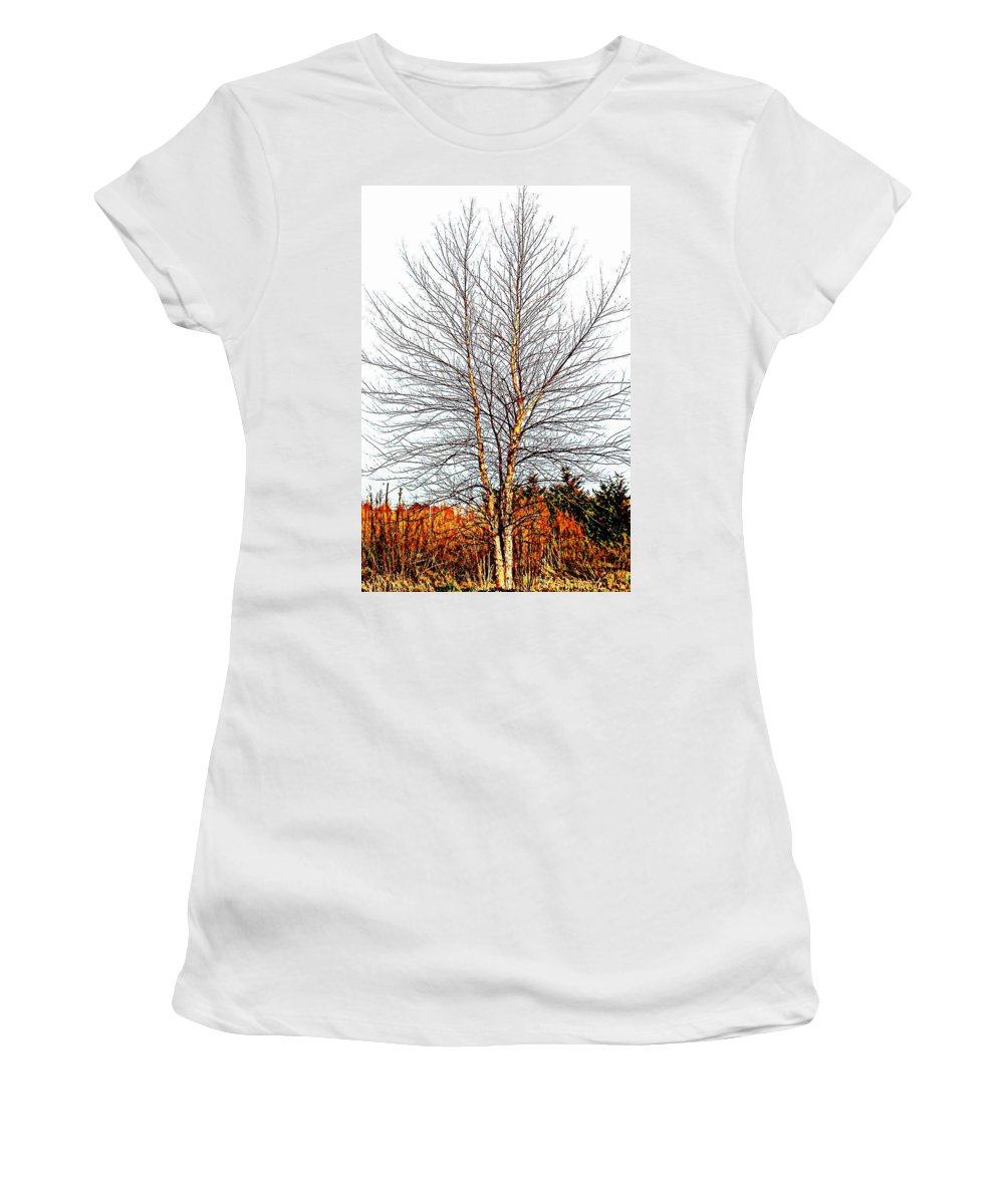 Tree Women's T-Shirt featuring the photograph Alone In The Field by Pamela Hyde Wilson