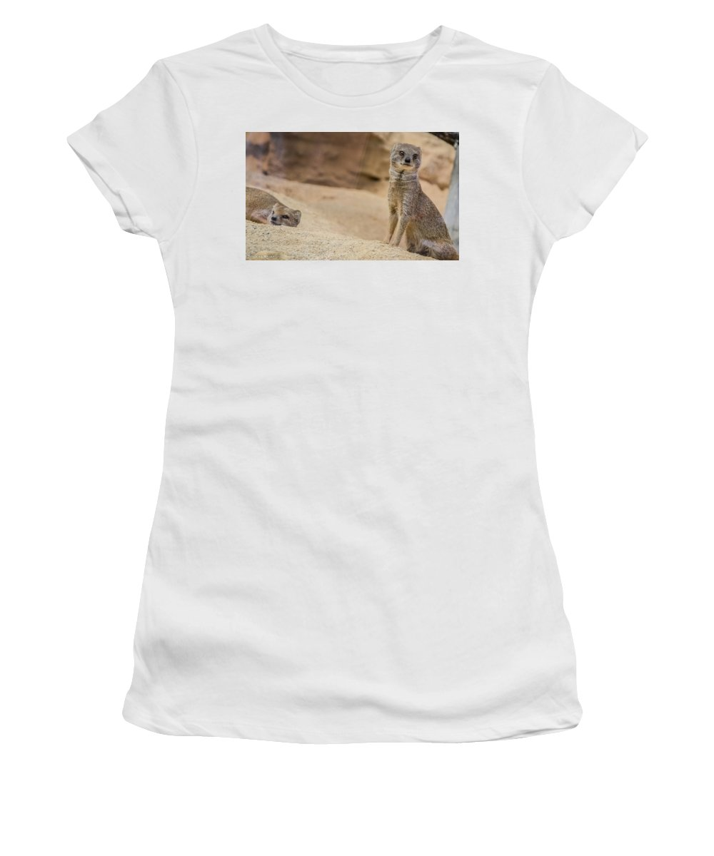 Fine Art Women's T-Shirt (Athletic Fit) featuring the photograph An Unhappy Life by Stwayne Keubrick