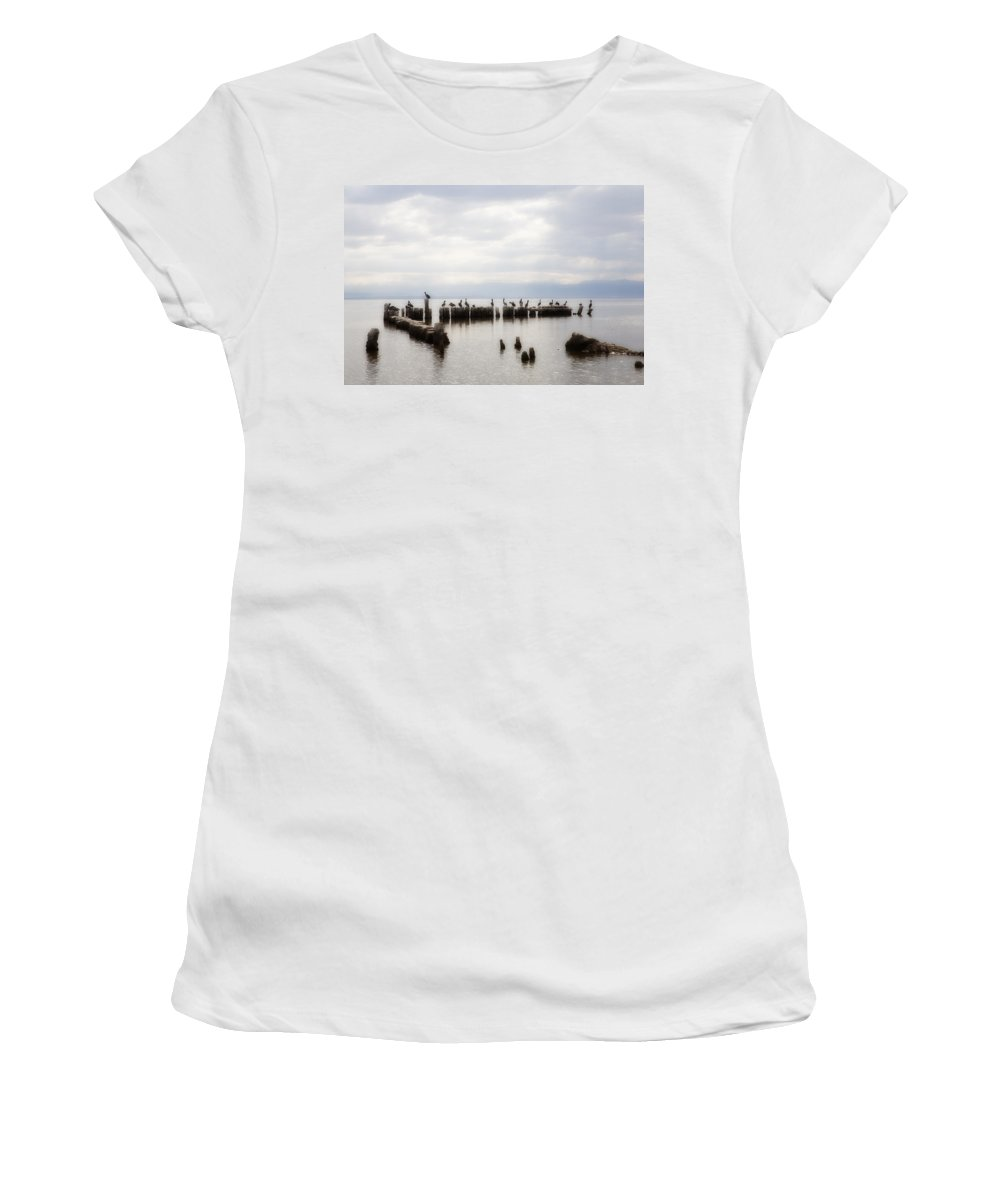 Saltn Sea Women's T-Shirt featuring the photograph Apostles Of The Salton Sea by Hugh Smith