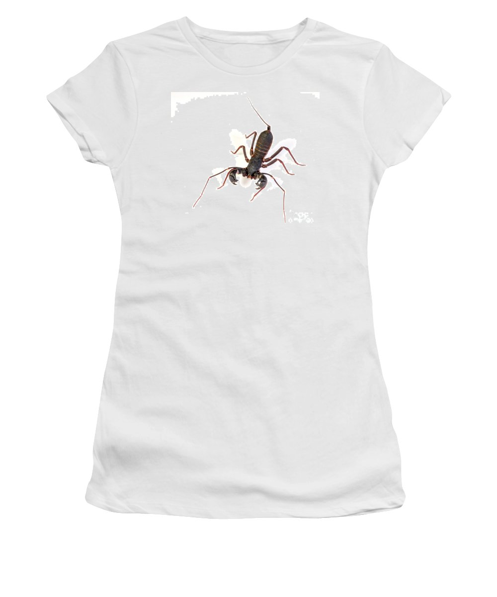 Asian Whipscorpion Women's T-Shirt (Athletic Fit) featuring the photograph Asian Whipscorpion by Francesco Tomasinelli