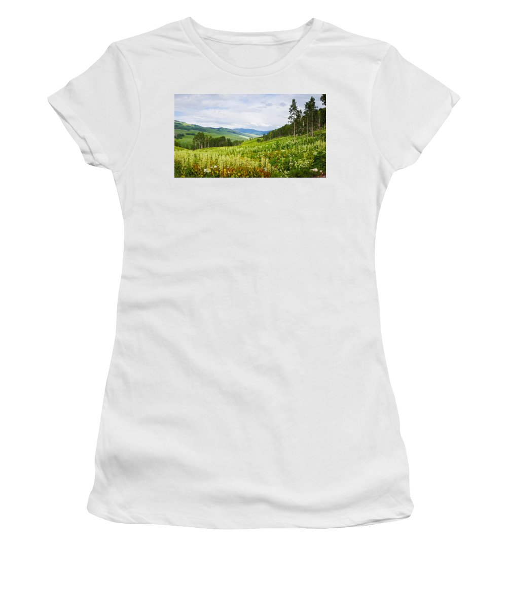 Photography Women's T-Shirt featuring the photograph Aspen Trees And Wildflowers by Panoramic Images