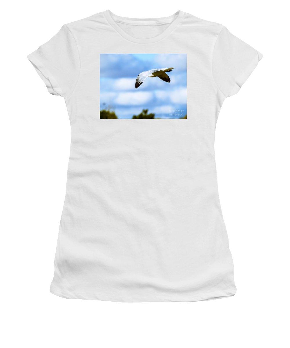 Gliding Women's T-Shirt featuring the photograph At Flight-8 by David Fabian