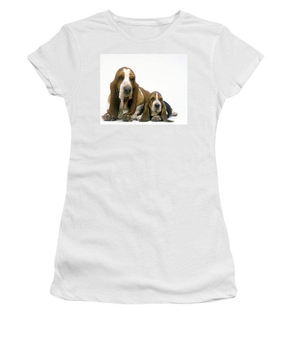 Basset Hound Women's T-Shirt (Athletic Fit) featuring the photograph Basset Hound Dogs by Jean-Michel Labat