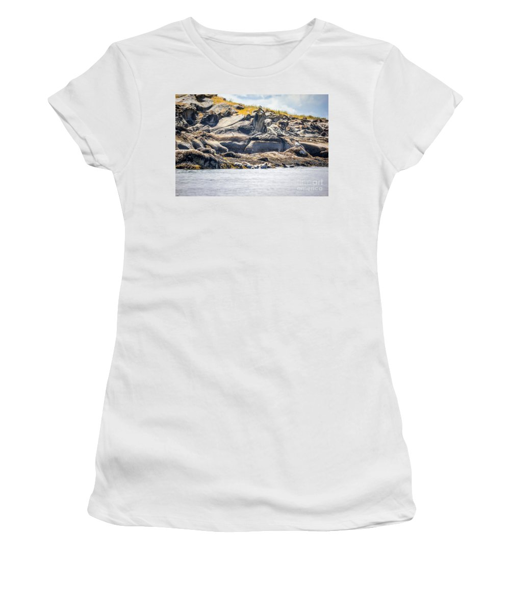 Harbour Seals Women's T-Shirt featuring the photograph Seals And Rock Scupltures by Alanna DPhoto