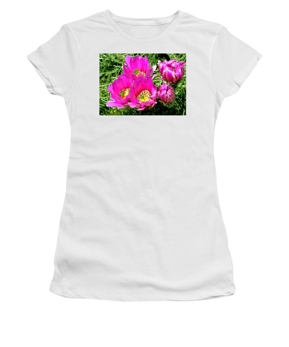 Anza-borrego Women's T-Shirt featuring the painting Beaver Tail Cactus Painting by Bob and Nadine Johnston