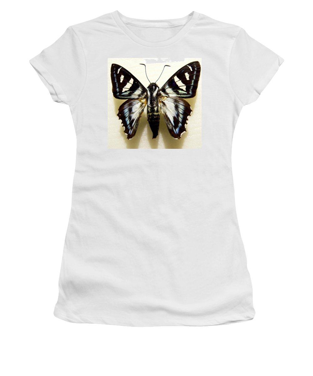 Butterfly Women's T-Shirt (Athletic Fit) featuring the photograph Black And White Moth by Rosalie Scanlon