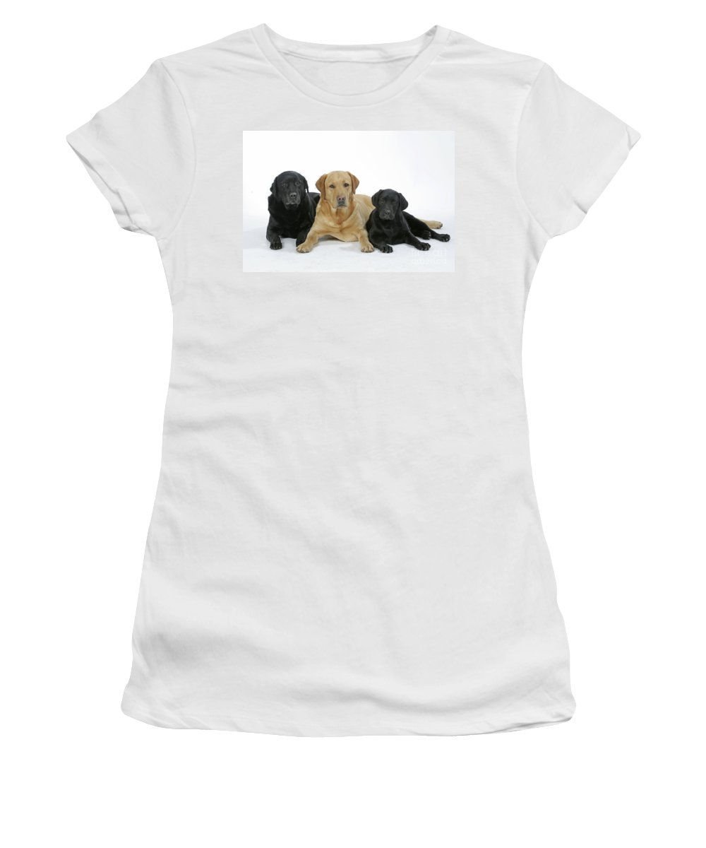 Dogs Women's T-Shirt (Athletic Fit) featuring the photograph Black And Yellow Labradors With Puppy by John Daniels