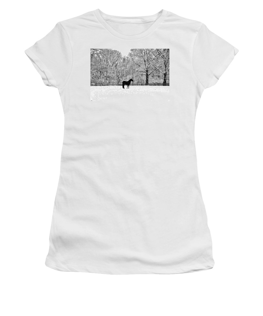 Black Horse In The Snow Women's T-Shirt featuring the photograph Black Horse In The Snow by Bill Cannon