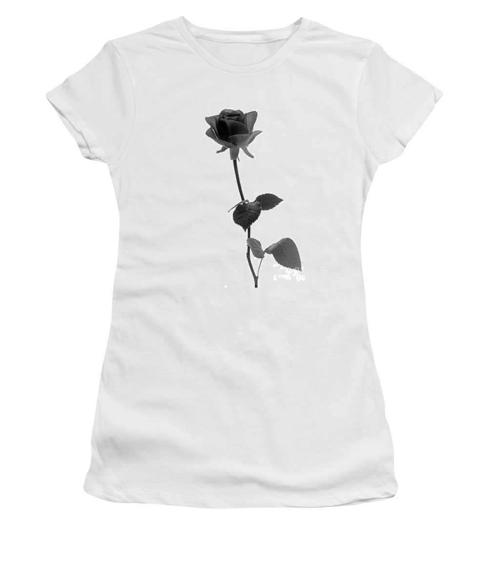 Rose Women's T-Shirt featuring the photograph Black Rose by Casper Cammeraat