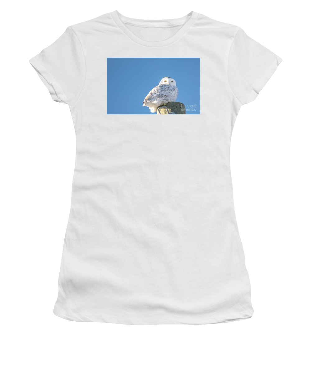 Field Women's T-Shirt (Athletic Fit) featuring the photograph Blue Sky Snowy by Cheryl Baxter