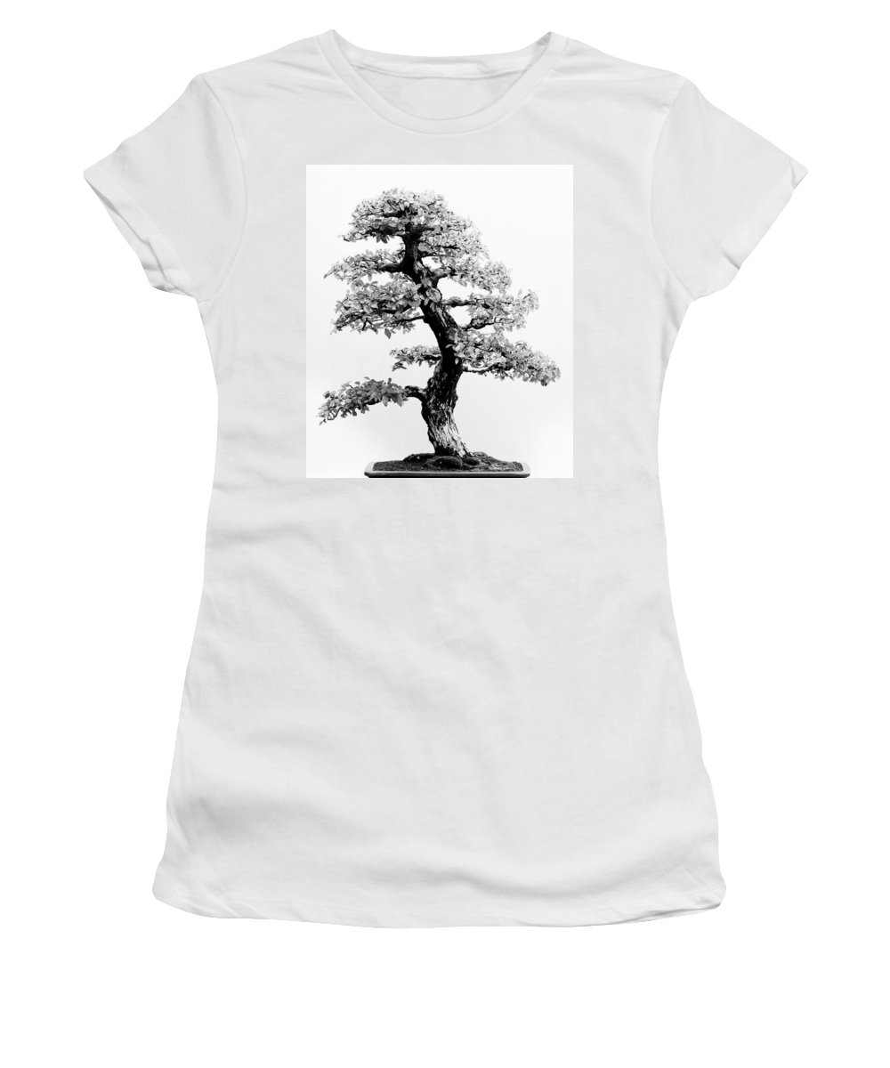 Japan Women's T-Shirt (Athletic Fit) featuring the photograph Bonsai Tree by Sebastian Musial