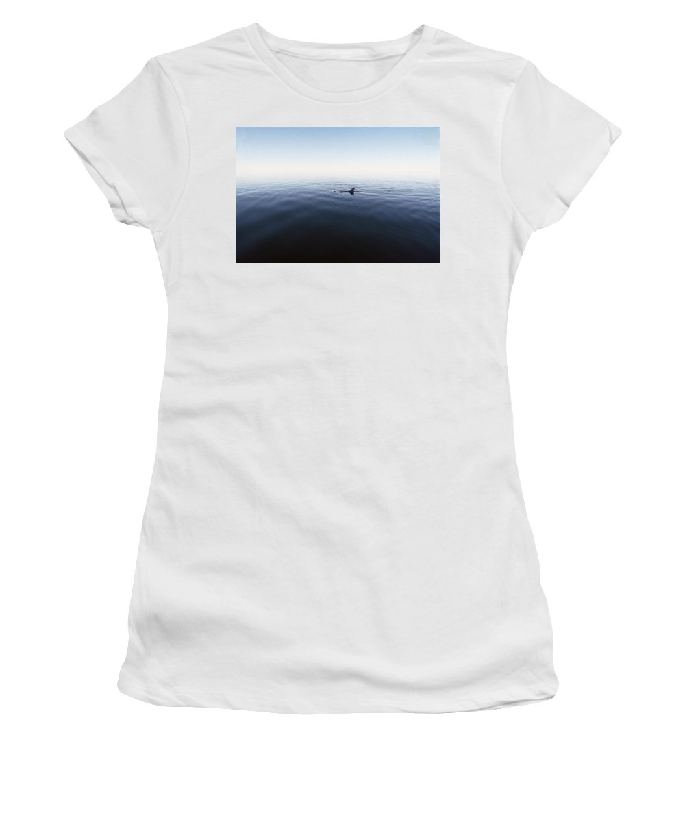 Feb0514 Women's T-Shirt (Athletic Fit) featuring the photograph Bottlenose Dolphin Surfacing Shark Bay by Flip Nicklin
