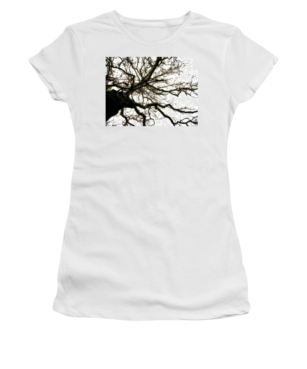 Branches Women's T-Shirt featuring the photograph Branches by Michelle Calkins