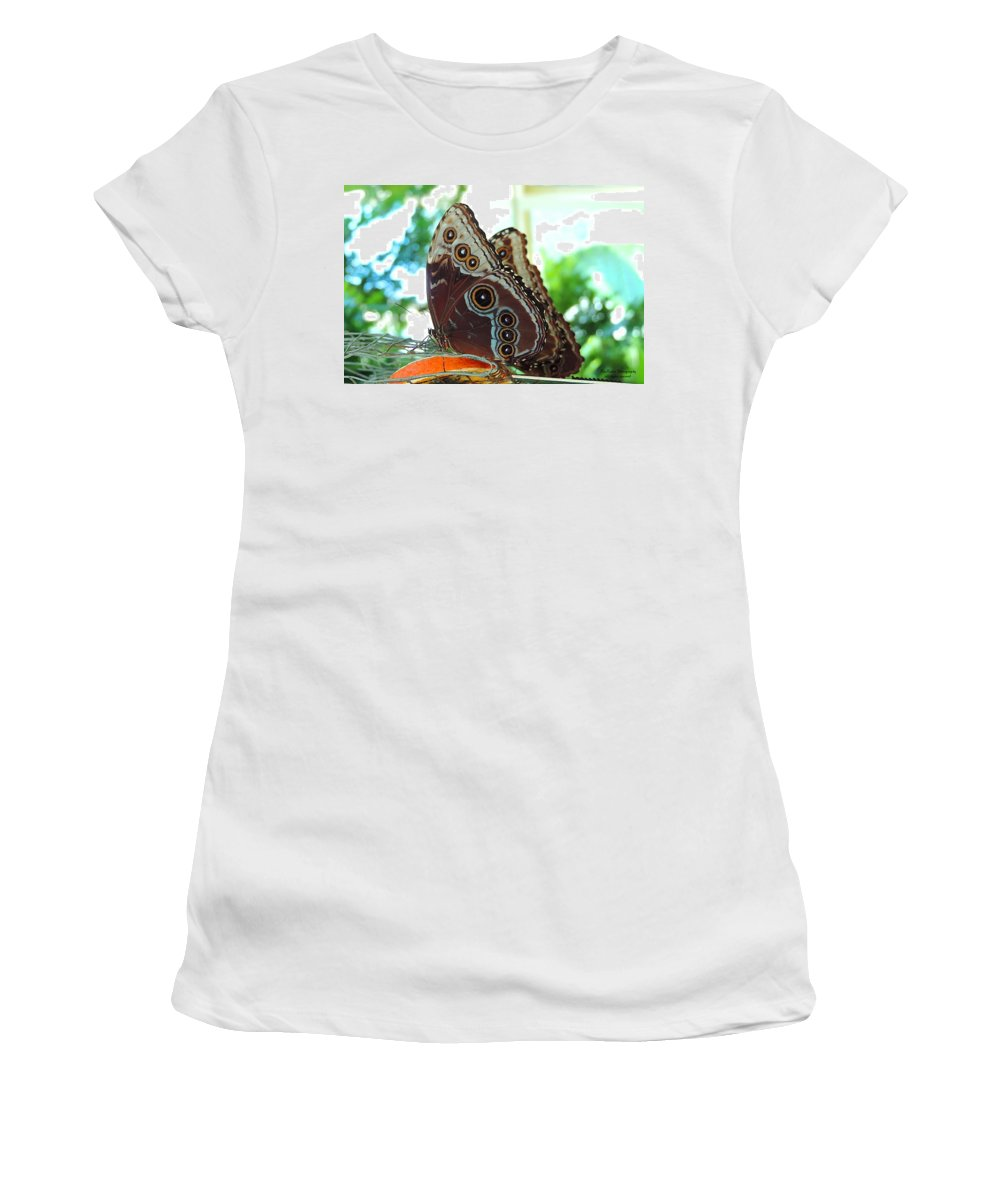 I Found This Lovely Buckeye Butterfly Women's T-Shirt featuring the photograph Buckeye Butterfly by Roe Rader