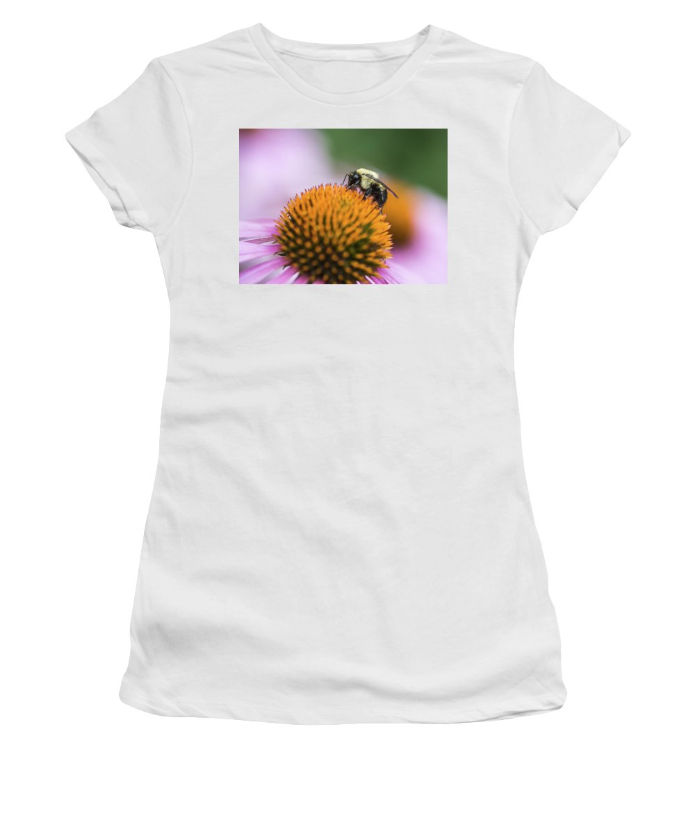 Bee Women's T-Shirt featuring the photograph Busy Bee On Cone Flower by Vishwanath Bhat