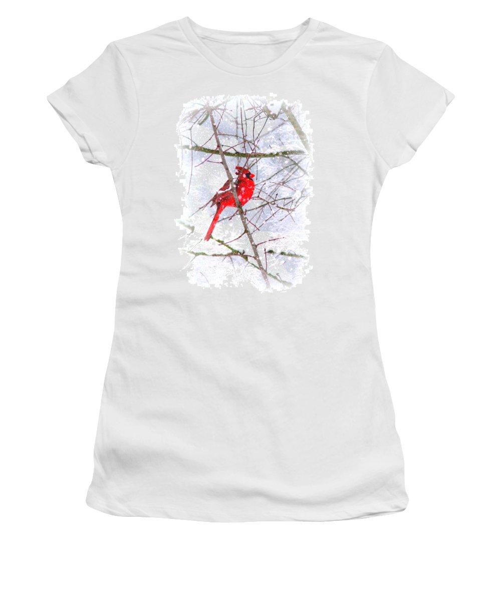 Cardinal Women's T-Shirt featuring the photograph Cardinal Christmas-2014 by Travis Truelove