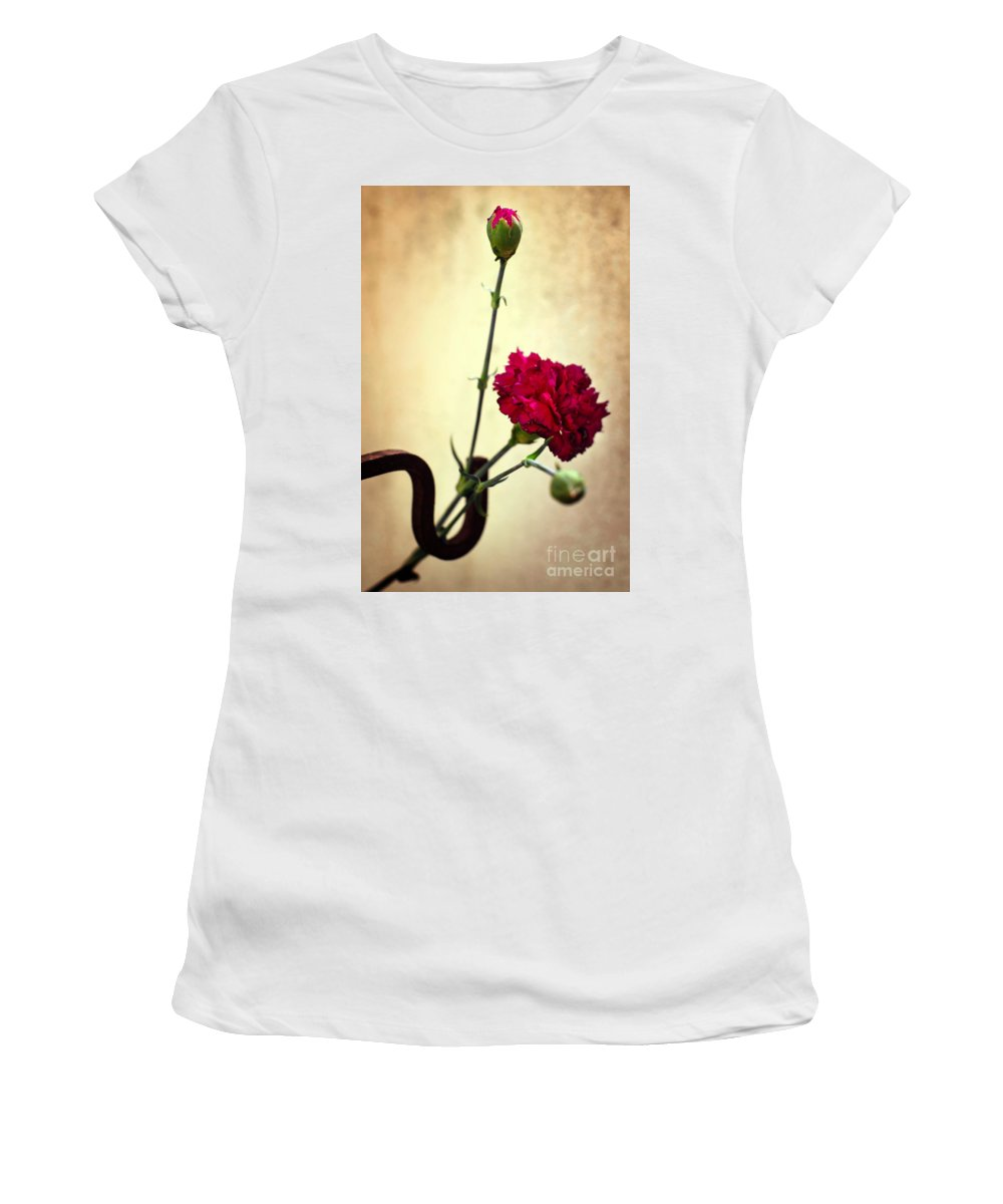 Background Women's T-Shirt featuring the photograph Carnation by Carlos Caetano