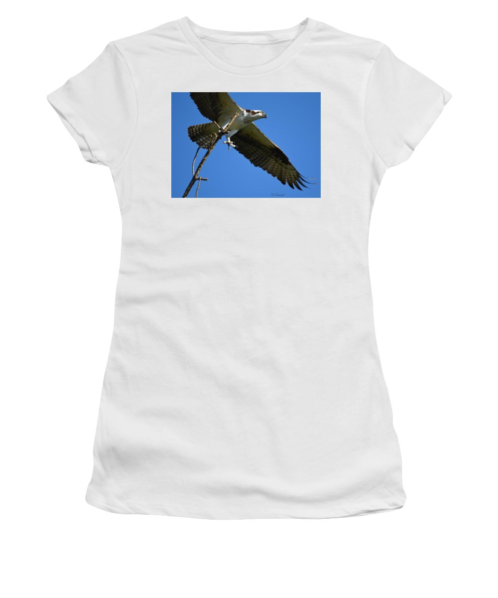 Osprey Women's T-Shirt (Athletic Fit) featuring the photograph Carrying A Nest For A Living by Patricia Twardzik