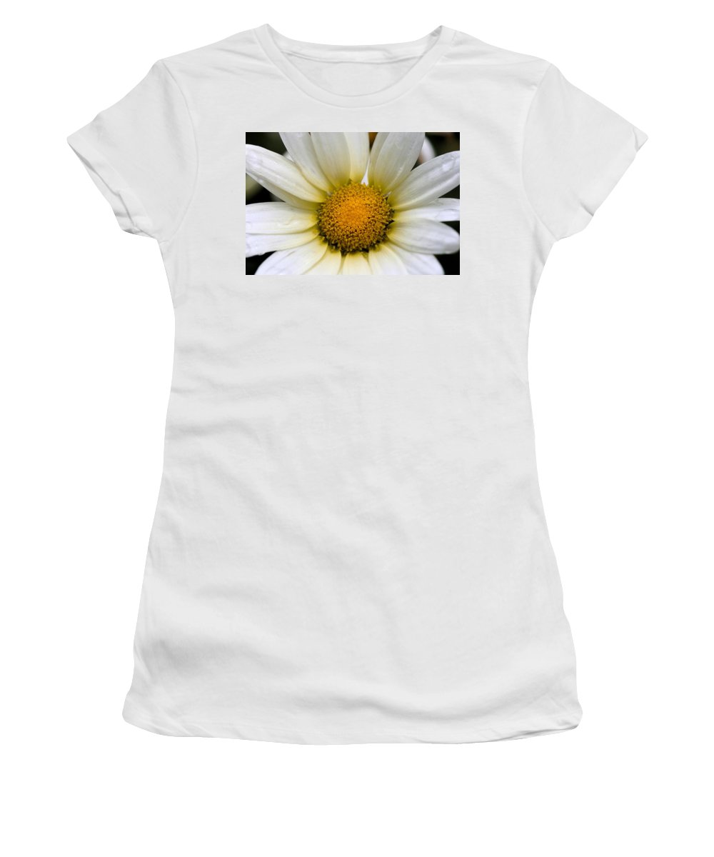 Flower Women's T-Shirt (Athletic Fit) featuring the photograph Cheery Daisy by Angela Rath