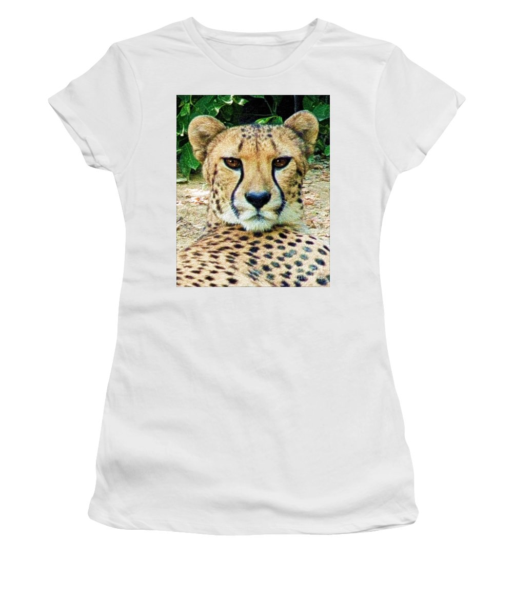 Women's T-Shirt featuring the photograph Cheetah Stare L by Dale Crum