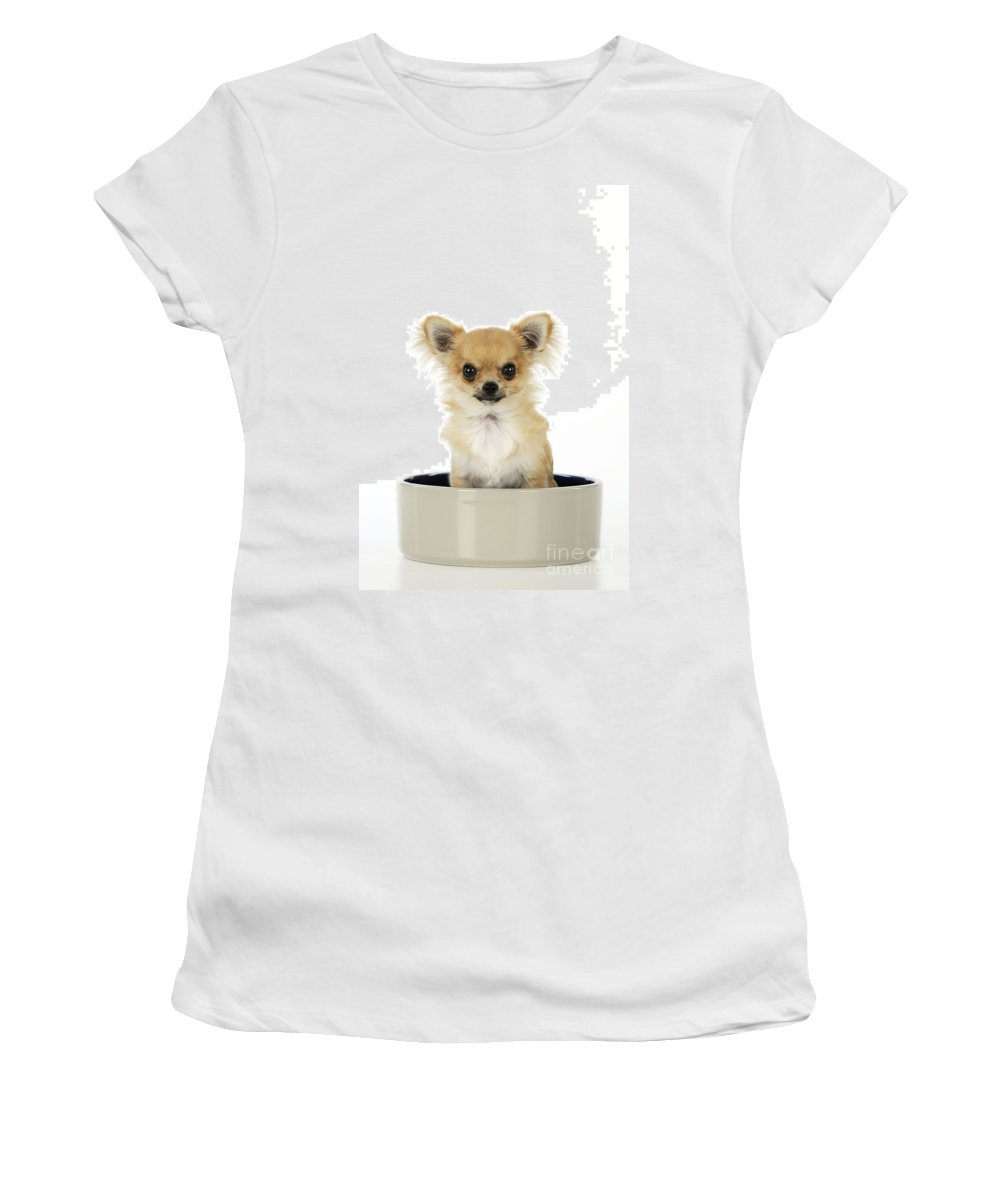 Chihuahua Women's T-Shirt (Athletic Fit) featuring the photograph Chihuahua Dog In Bowl by John Daniels