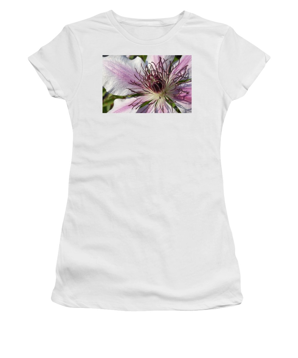 Spring Women's T-Shirt featuring the photograph Clematis by Charlotte Stevenson