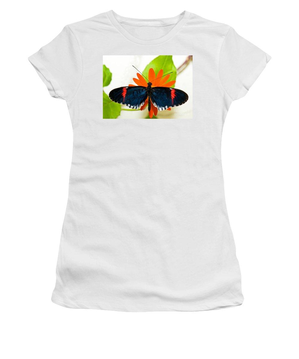 Tropical Butterfly Women's T-Shirt featuring the photograph Cythera Butterfly by Millard H Sharp