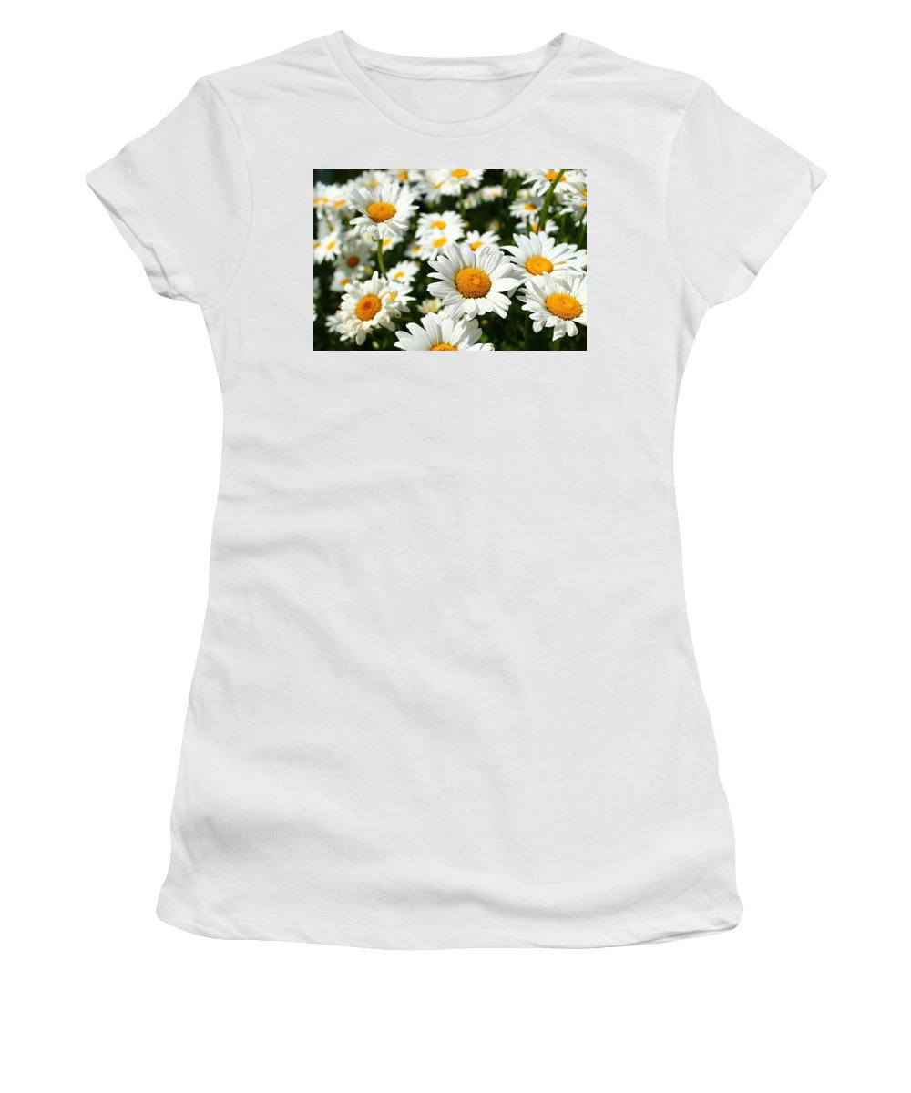 Daisies Women's T-Shirt featuring the photograph Daisy Day by Catie Canetti