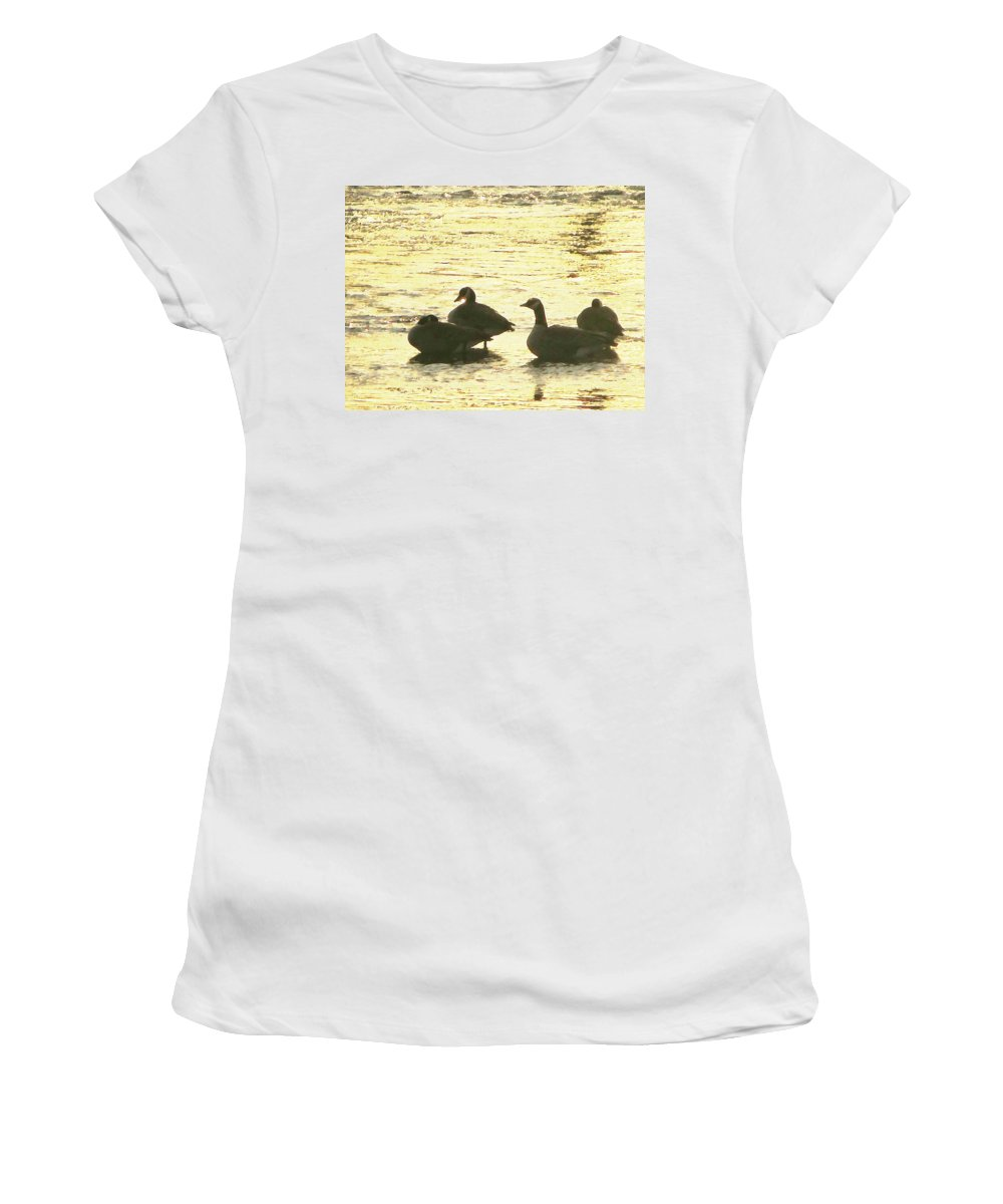 Geese Women's T-Shirt (Athletic Fit) featuring the painting Days Love by Robert Nacke